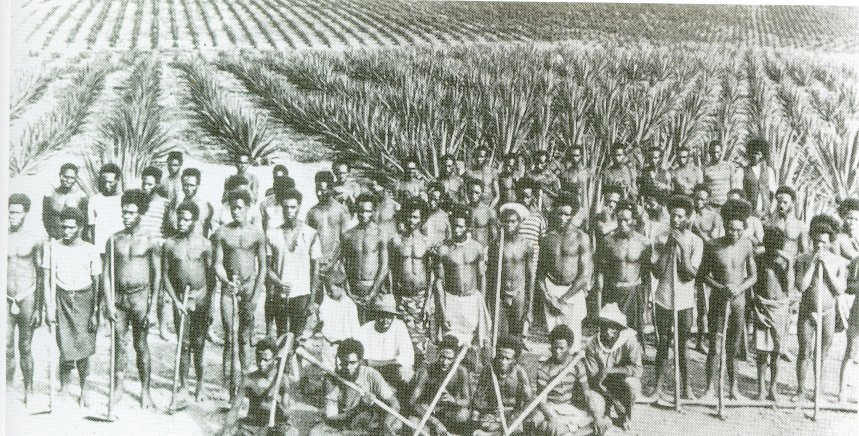 city slaves vs plantation slaves The slave labor experience, in particular, is considered one that existed entirely on plantation fields  not all rural slaves worked on  as elizabeth city,.