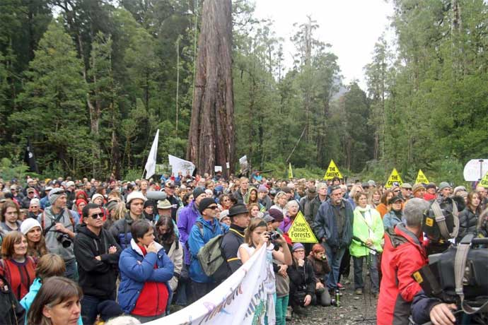 The Workplaces (Protection from Protesters) Bill has been triggered by forest protests.