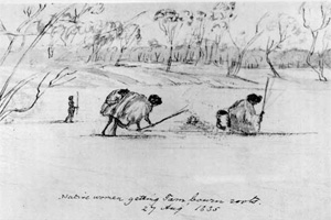 Yam Diggers at Indented Head Victoria 1835