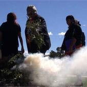 Aborigional entrepreneurial opportunity