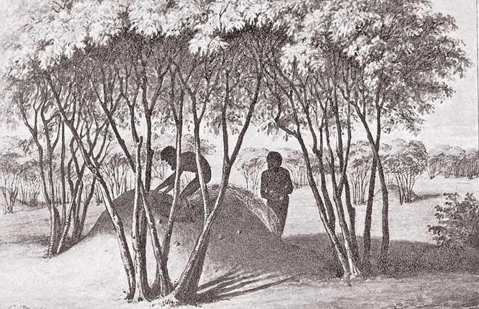 Sketch by William Blandowski Collecting eggs in what looks like wild turkey nest c1840-60