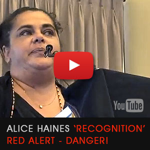 Alice Haines explains the deceit in Constitution 'Recognition'