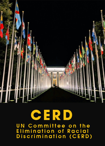 UN Committee on the Elimination of Racial Discrimination (CERD)