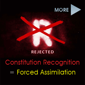 More articles on this site regarding Constitution 'Recognition' and the 'Referendum Council'