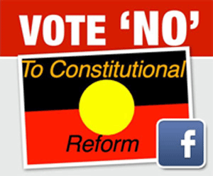 Vote 'NO' To Constitutional Change