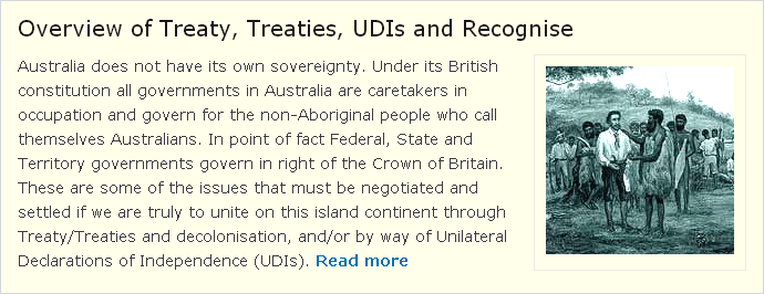 Overview of Treaty, Treaties, UDIs and Recognise