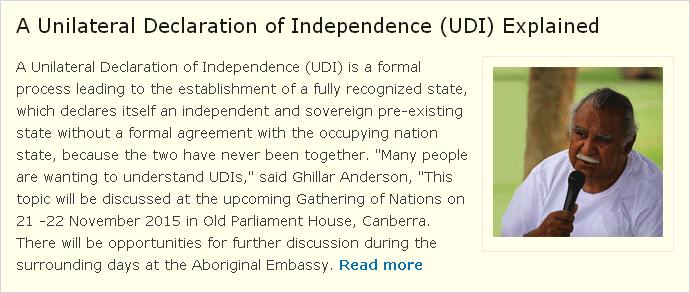 UDIs Explained