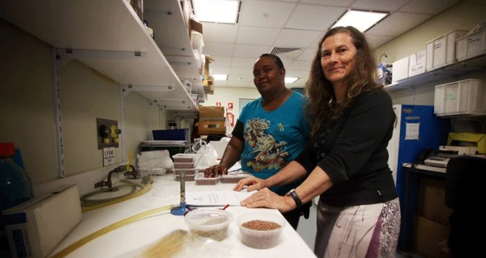 Lorraine Williams and Dr Penny Wurm in the seed lab at Charles Darwin University. - Pic Caddie Brain
