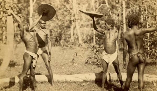 Four rainforest men demonstrating the art of combat, Far North Queensland, in the late 1800s to early 1900s.