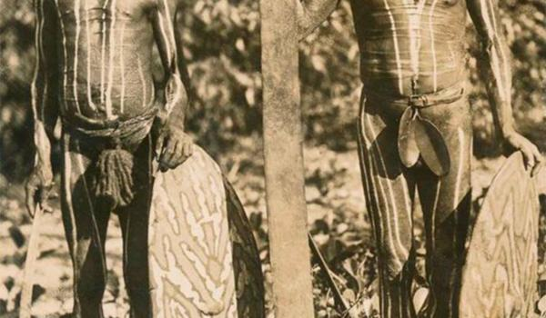 Rainforest men with decorated fig shields called 'magurra' and one holding a sword club, photographed in Far North Queensland in the 1800s. -  Restored and enhanced by IDIDJ Australia