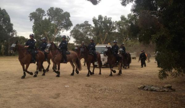Mounted police move in on the camp at Heirisson Island. (Picture: David Weber, ABC News)