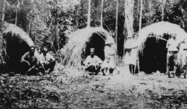 Malanda camp 1930's