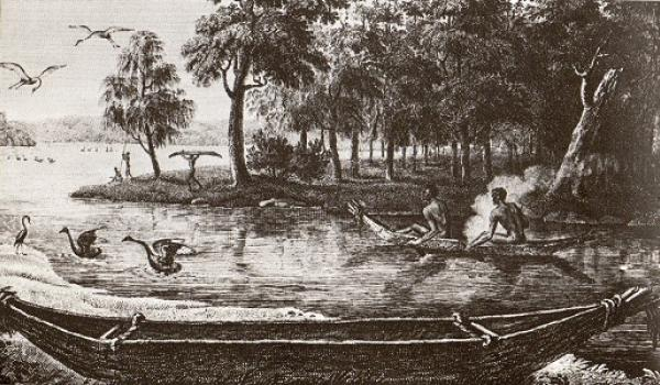 Tied bark canoes in use at at Port Jackson, New South Wales, 1802.