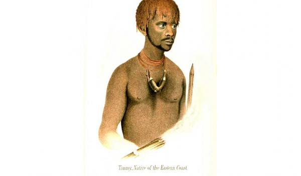 Timmy (Robert/Maulboyheenner) and his wife Jinny (Munginabitta/ Semiramis/Jenny/Numbloote) were removed to Flinders Island in 1835, where in 1839 Munginabitta died. Maulboyheenner was one of the group taken by Robinson to Port Phillip when he was appointed Chief Protector of Aborigines in 1839. Maulboyheenner was hanged in 1842. (Portrait studies from James Fenton's History of Tasmania Hobart in 1884. This work was completed between 1831-35)